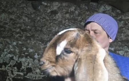 англо-нубійські-кози-порода